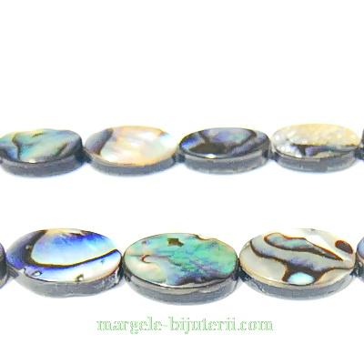 Scoica Paua, ovala, 12x10x3mm 1 buc