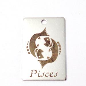 Pandantiv otel inoxidabil zodiac, PESTI, 30x20mm  1 buc