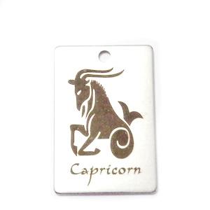 Pandantiv otel inoxidabil zodiac, CAPRICORN, 30x20mm   1 buc
