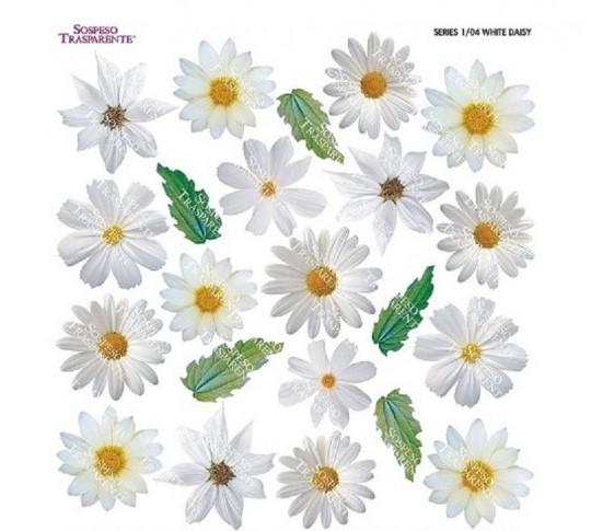 Folie imprimata Sospeso Trasparente 1/04 White Daisy 1 buc