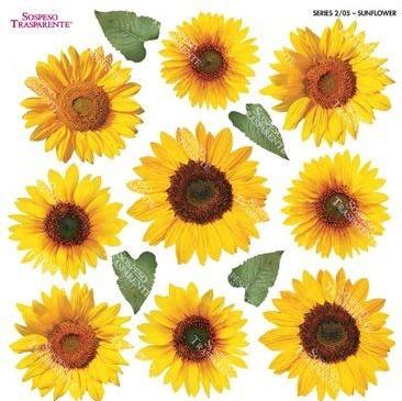 Folie imprimata Sospeso Trasparente 2/05 Sunflower 1 buc
