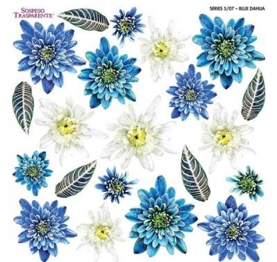 Folie imprimata Sospeso Trasparente 5/07 Blue Dahlia 1 buc
