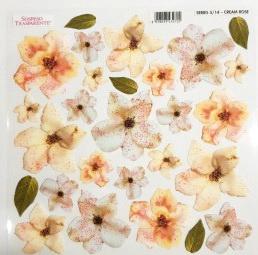 Folie imprimata Sospeso Trasparente 5/14 Cream Rose 1 buc
