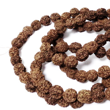 Margele, seminte de rudraksha, maro, 10-11mm-sir cca 108 buc 1 buc