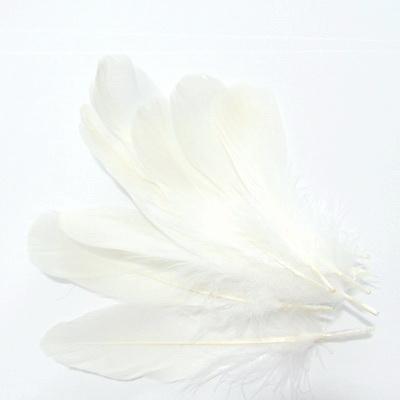 Pene albe 8-14 cm 10 buc